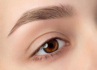 Jak zbudowane jest ludzkie oko